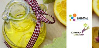 Lohiya Group Digital Agency