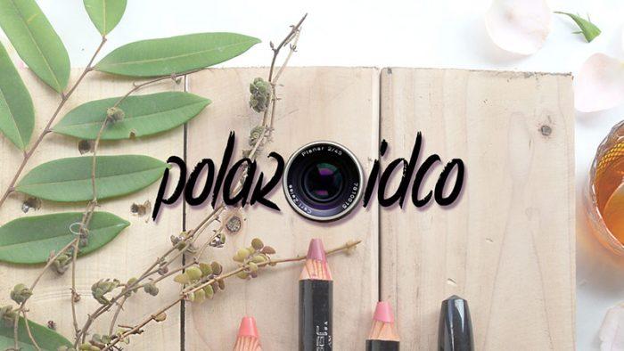 Polaroid Co