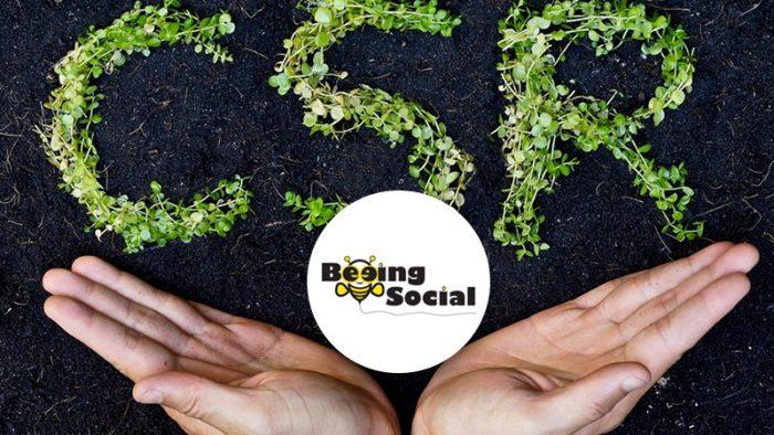 Beeing Social