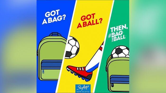 Bag The Ball