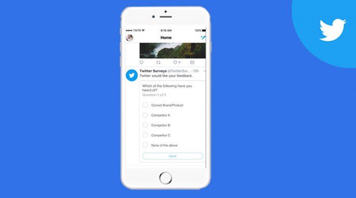 Twitter Brand Surveys