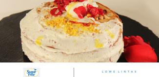 Zydus Wellness Sugar-Free and Lowe LintasSugar-Free and Lowe Lintas