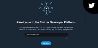 Twitter developer