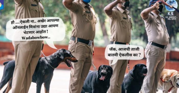 Police dog creatives